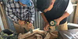 Bone and Wood Carving training